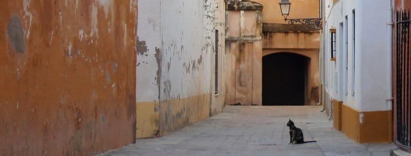 Tours de verano en Sevilla. La mañana y el atardecer.