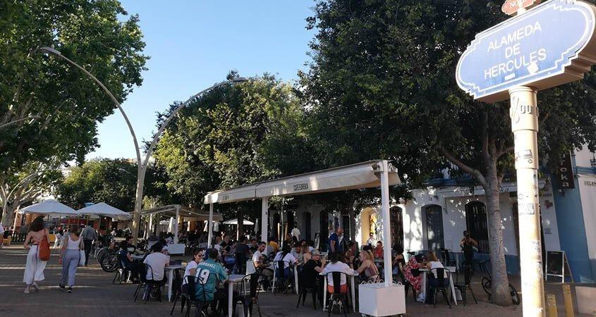 Lugares históricos de Sevilla: La Alameda de Hércules | Tours guiados en Sevilla
